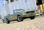 1968er Ford Mustang Convertible: Florida-Fund: Pony Car Survivor in ungewöhnlicher Farbe