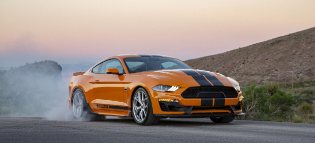 600 PS Mietwagen: 2019 Shelby GT-S SIxt Shelby Mustang
